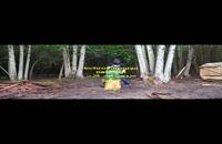 خلاقیت در جنگل-بهروسرماصنعت