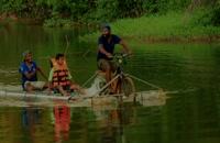 مسافر کشی بر روی آب