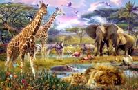 مدیتیشن برای ارسال انرژی عشق به حیوانات
