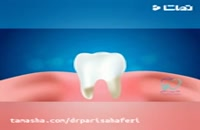 دکترهای دندان پزشکی شیراز