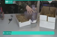 تولید قارچ را چگونه انجام دهیم؟
