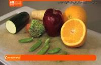آموزش تربیت طوطی - چه غذاهایی برا طوطی شما مفید است