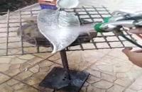 دستگاه آبکاری فانتاکروم فرمول آبکاری