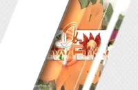 آموزش میوه آرایی - طرح گل با خیار