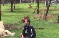 صحنههای زیبایی از نجات جان انسان توسط حیوانات