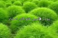 فروش پودر مخمل 3میل سبز به صورت فله /دستگاه مخمل پاش09190924535
