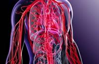 درمان بیماری رماتیسم