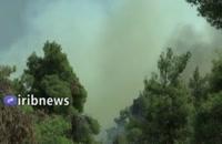 آتش سوزی جنگل در نزدیکی آتن