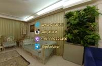 نصب و راه اندازی دیوار سبز در محیط آپارتمانی
