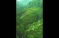 ابود در جزیره بالی (جزیره خدایان) اندونزی