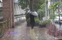 بارش باران هوای تابستانی در رشت