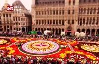 جشنواره فرش گل بسیار زیبا در بروکسل