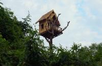 کاملا عالی! با استخر شنا و پارک سرسره های آبی یک خانه درختی شگفت انگیز بسازید
