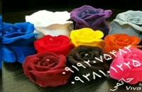 دستگاه مخمل پاش روی گل طبیعی09213896022پودر مخمل//چسب مخمل ضدآب