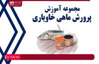 آموزش پرورش ماهی خاویار - اصول بهداشتی و بیماری های رایج و درمان آنها