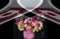 گل فروشی آنلاین مشهد ???? |   ارسال گل به مشهد | سفارش گل در مشهد