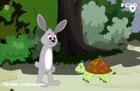 قصه شب برای کودکان - خرگوش و لاکپشت