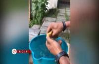 آموزش ساخت ظرف آب برای حیوانات