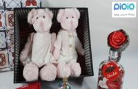 کادو آماده ولنتاین با عروسک خرس زوج صورتی