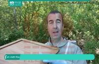 پرورش و نگهداری زنبورداری