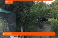 آموزش تربیت طوطی - دستی کردن طوطی شما - ویدیو اول