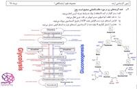 بیوشیمی عمومی، آزمون ارشد علوم آزمایشگاهی (1) 98