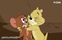 انیمیشن تام و جری _ خانواده خرگوش ها