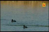 پارک ملی دریاچه ارومیه قسمت اول