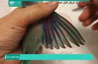 آموزش دستی کردن طوطی