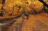 نمایی رومانتیک از طبیعت - پاییز زیبا