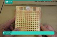 بهترین فیلم های آموزش زنبورداری در ایران