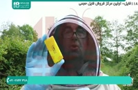 آموزش زنبورداری توسط کادر مجرب بصورت پیشرفته _فارسی