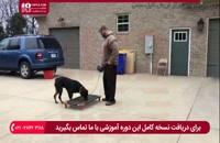 آموزش اصول تربیت سگ نگهبان ( فرمانبرداری سگ )