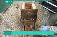 آموزش زنبورداری در ایران تبدیل کندو چه به کندو بزرگ