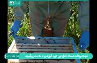 زمان مناسب برای تکانی کندو زنبور عسل قسمت 1