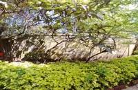 ویدیو تور مجازی 360 درجه ویلایی لوکس در بندر انزلی
