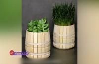 آموزش چند ترفند حرفه ای برای پرورش گل و گیاه