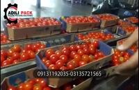 دستگاه بسته بندی گوجه ساخت عدیلی