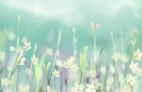 پس زمینه اسلو موشن گل