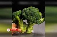 چگونه میوهها و سبزیجات را مدت بیشتری تازه نگه داریم؟