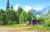 تریلر انیمیشن گوسفند و گرگ ها 2 Sheep and Wolves 2: Pig Deal 2019