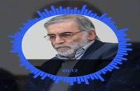 hoy martirizaron a un gran científico iraní