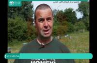 آموزش زنبورداری جامع و کامل | ویروس فلج زنبور