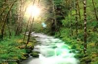 صدای بی نظیر طبیعت