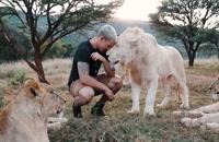 مستند زندگی با شیر ها