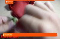 آموزش عطرسازی - چگونگی ساخت عطر از گل رز