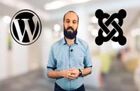 7 دلیل برای استفاده از وردپرس در طراحی سایت