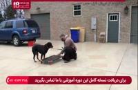 آموزش فرمان منع کردن به سگ