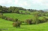 تصاویر دیدنی از روستای The Cotswolds انگلیس