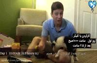 تعلیم . تربیت سگ (پارت 1)